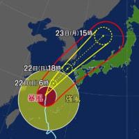 連敗のカープと台風17号と大相撲優勝争い