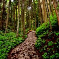 【令和元年梅雨の鎌倉、馬籠・妻籠、勝沼を歩くひとり旅の巻0】