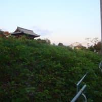 これでいいのか京都 シリーズ(7)仁和寺前ホテル建設地をウォッチング