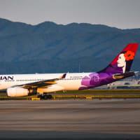 ハワイアン航空、日本発着路線を全便一時運休‼️