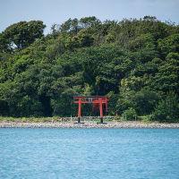 6/9 孔島・鈴島の自然観察会へ