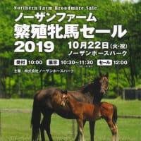 【ノーザンファーム繁殖牝馬セール2019(Northern Farm Broodmare Sale)】~結果概要(最高額馬写真・動画、インタビュー映像など)