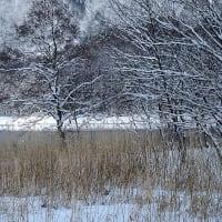 ★青木湖の雪景色(2)2020