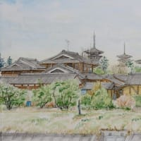 秋篠川から薬師寺 (カズ)