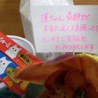病院から蓮にお花が届きました