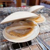 カガミ貝がパカッ!小田原早川漁村 漁師の浜焼 あぶりや