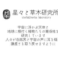 オンラインzoom講座・薬草占星学入門
