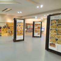 砂の美術館パネル展示【2月末まで】