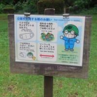 長沼行きは雨でお流れ・・・桜ケ丘公園へ