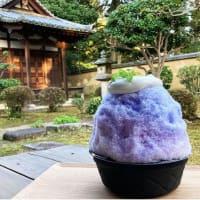 かき氷の「ほうせき箱」、8月中は東大寺「観音院」で営業!(2020 Topic)