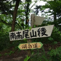 満喫!夏の高尾山