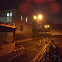 駐輪場の最終日