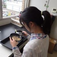 水稲種子生産物審査を行っています!