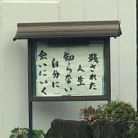 お寺の掲示板(容子)
