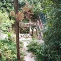 本日は毎日前を通るのにこの夏一度もお参りしていなかった安居神社へ。安居神社は真田幸村終焉の地として有名。おみくじは15番末吉。