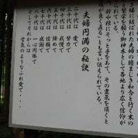 田舎にある神社