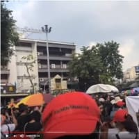 タイ  高まる王室改革要求 14日、首相辞任・王室改革を求める大規模な反政府抗議デモ
