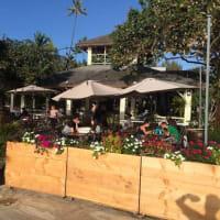 ベアフット・ビーチ・カフェ、ハワイ オアフ島レストラン。