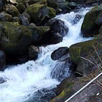 清流の 萬城の滝 めっちゃええ/伊豆半島の旅6