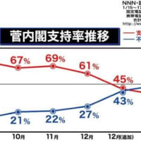 菅内閣「不支持」49%・「支持」39%で初の逆転、コロナ対策に不満か…読売世論調査 読売新聞 2021/01/17 22:07