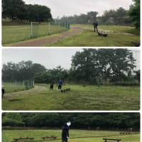 令和元年 第2回 草刈り作業終了