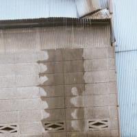 雨降り月曜日 揺れる朝