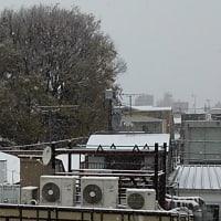 〔関東春の大雪〕東京・多摩地方の大雪警報は解除明朝は路面凍結に注意(3/29)