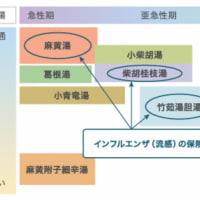 """新型コロナ""""感染後"""" を見据え:2"""