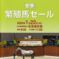 【ジェイエス・冬季繁殖馬セール2020(JS Company Winter Broodmare Sale)】は明日1/22(水)開催!