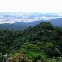 大岩ガ岳 おおいわがたけ 384m