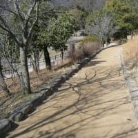 園路の勾配と土系舗装