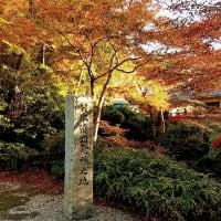 正暦寺、昔は大きなお寺だったらしい 人形供養でも有名です