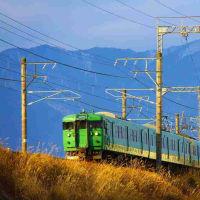原色117系電車!