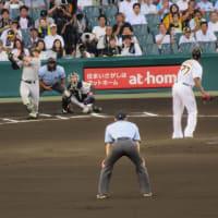 甲子園の阪神VS巨人戦を観ました。