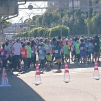 横浜マラソン2019警備してきました!