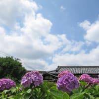 貴重な2019年梅雨の晴れ間 by 空倶楽部