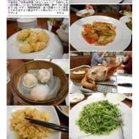 中華街を案内した記録をまとめてみました 記録(読売カルチャー) 中華街楽しむ・知る講座-第40回「季節のお勧め料理②」+横浜公園のチューリップ