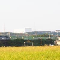 2021年10月5日 山陽線 56レ EF210+福山通運,115系