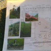 (仮称)おおらかに暮らしを包み込む数寄屋の家新築工事・建物本体から繋がる庭と風景のバランス控えめな姿勢と和風建築の設計デザイン感度と坪庭(中庭)と庭園の魅力