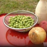 えんどう豆のスープ ~葉山庵のごはん