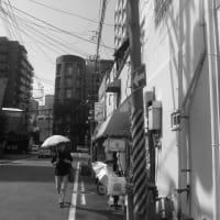警固 No.2  (中央区)