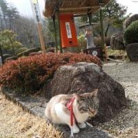 アズキさん kikiさん 道の駅 願成就温泉です。