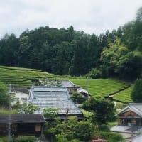 宇治田原町の旅 正寿院