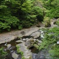 5月の森林浴~菊池渓谷
