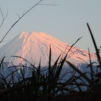 朝焼けと紅富士