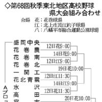 花巻東・岩手高校と対戦・高校野球県大会