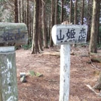 2020/03/01>トレッキング7回目 恋姫山 リトライ