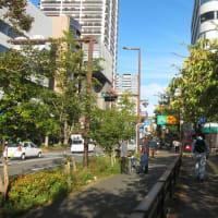 舞鶴公園 No.5 (中央区)