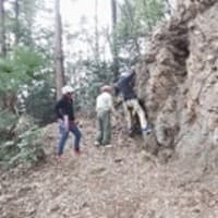 3月15日、天覧山の岩トレに参加しましたが、さっちゃんは多峯主山までのハイキングをしました