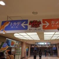東京レプタイルズワールド2020冬に行ってきました